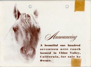 Payne Ranch 1955 Sale Brochure