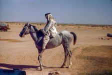 Arab Mounted Bareback