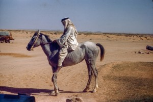Arab Mounted Bareback