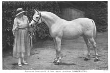 Baroness Wentworth