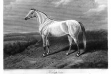 1868 Katplan