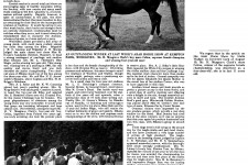 Record Entry at the Arab Horse Show 1961