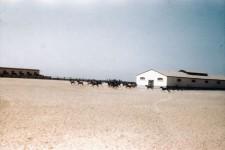 RAS. Colts' Paddock c1946