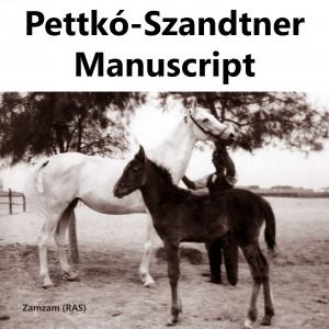 The Handbook of Tibor von Pettkó Szandtner, El Zahraa, Ein Shams