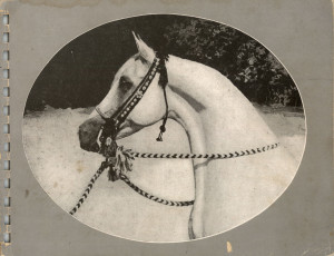 1937 Selby Stud Brochure of Arabian Horses, reprint