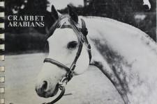 Crabbet Arabians, stud photo album, 1982