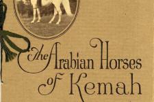 The Arabian Horses of Kemah 1922 stud brochure