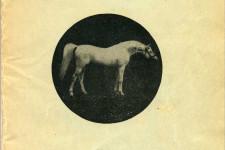 Crabbet Arabian Stud 1924 catalog and sales list