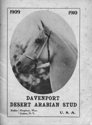 Davenport Desert Arabian Stud 1909–1910 catalog