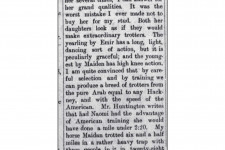 Arabs as Trotters, prob. Miss Ethelred Dillon